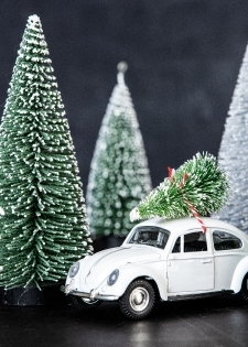 Dekoration X-MAS Car Vit